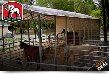 Metal Horse Barn Run In Shelter