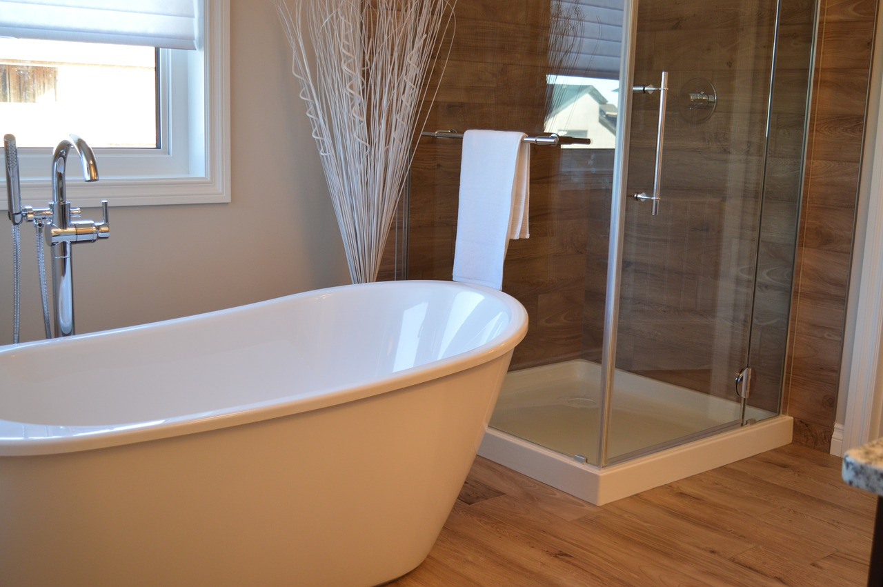 Modern tub with clear shower